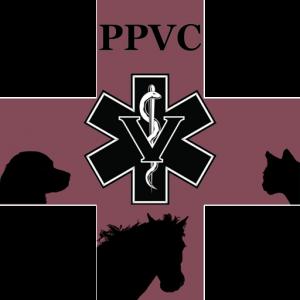Palo Pinto Vet Clinic